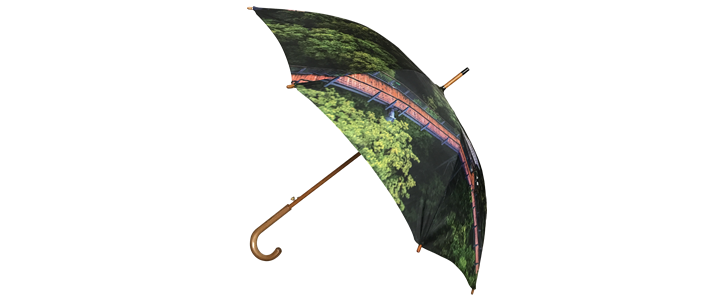 umbrella-full-color-photo-front-2.png