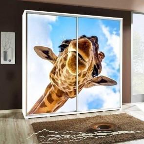 Armadio 2 ante scorrevoli Eliot 205 Giraffa