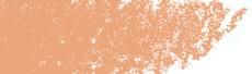 C560 Pesca - Derwent Coloursoft