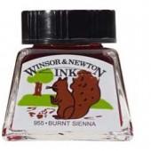 74 Terra di Siena bruciata - Inchiostro Winsor e Newton 14ml