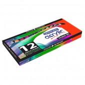 Confezione da 12 tubi 22ml di colori acrilici Graduate