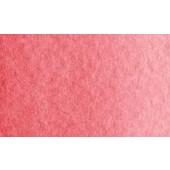 176 - Lacca di garanza rosa  - Acquarello Maimeri Blu mezzo godet