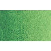 314 Verde di Hooker Chiaro - Acquarello Winsor & Newton Cotman mezzo godet
