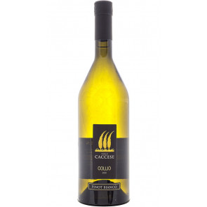 Paolo Caccese Collio Doc Pinot Bianco 2019